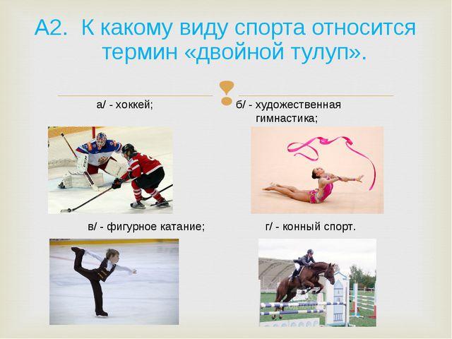 А2. К какому виду спорта относится термин «двойной тулуп». а/ - хоккей; б/ -...