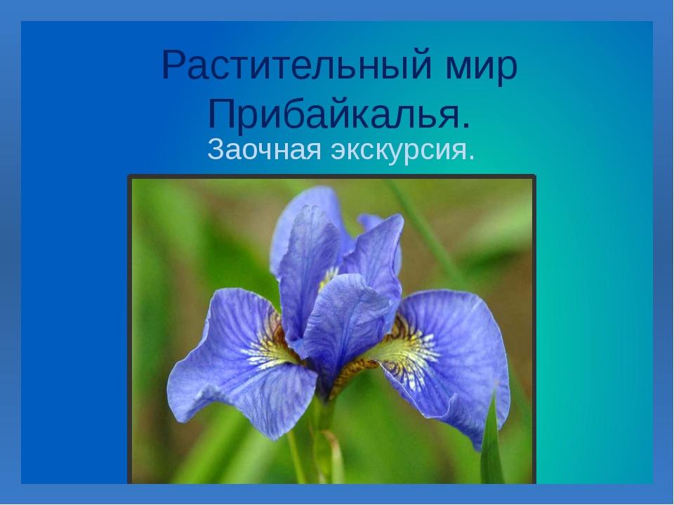 Растительный мир Прибайкалья. Заочная экскурсия.