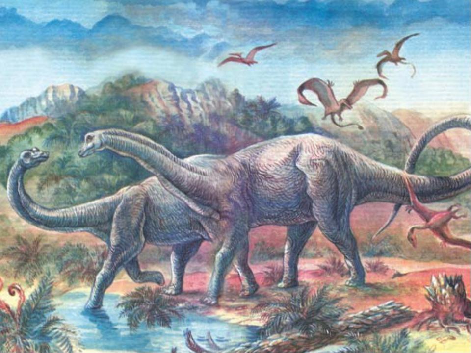 Это были самые маленькие хищные динозавры