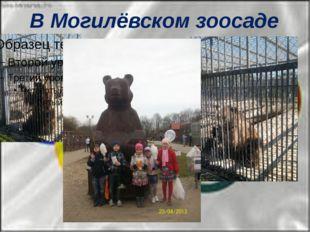 В Могилёвском зоосаде