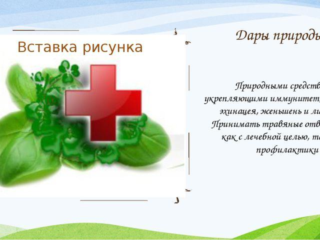 Дары природы Природными средствами, укрепляющими иммунитет, являются: эхинаце...