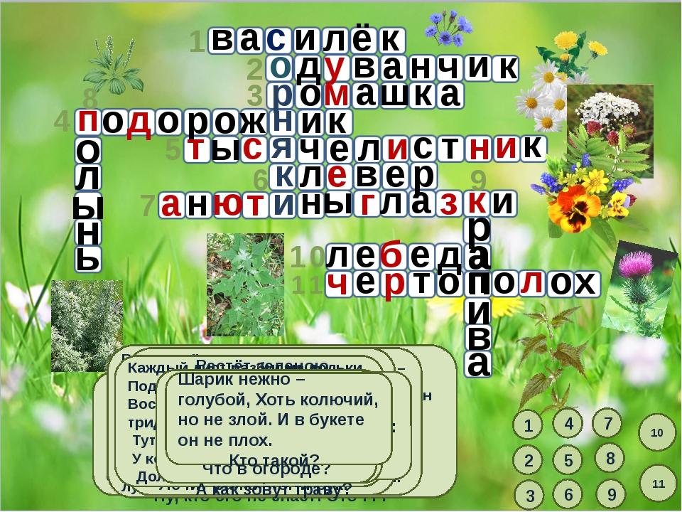 3 1 4 5 6 7 10 11 8 9 1 В траве густой, зеленой он выглядит нарядно, Но с паш...
