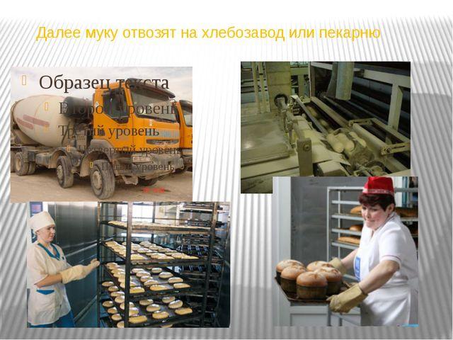 Далее муку отвозят на хлебозавод или пекарню