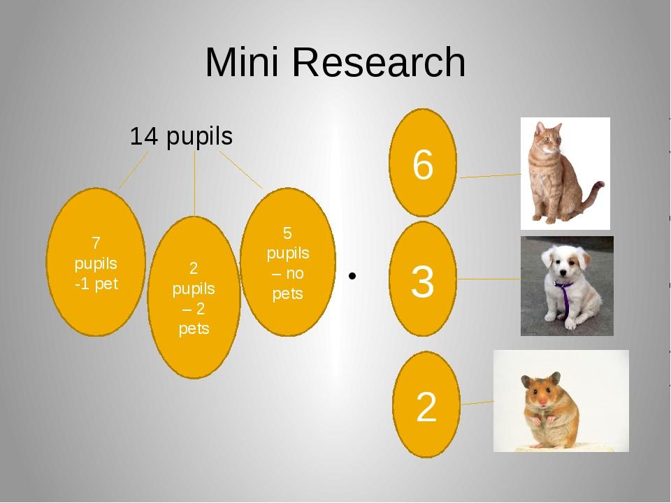 Mini Research 14 pupils 7 pupils -1 pet 2 pupils – 2 pets 5 pupils – no pets...