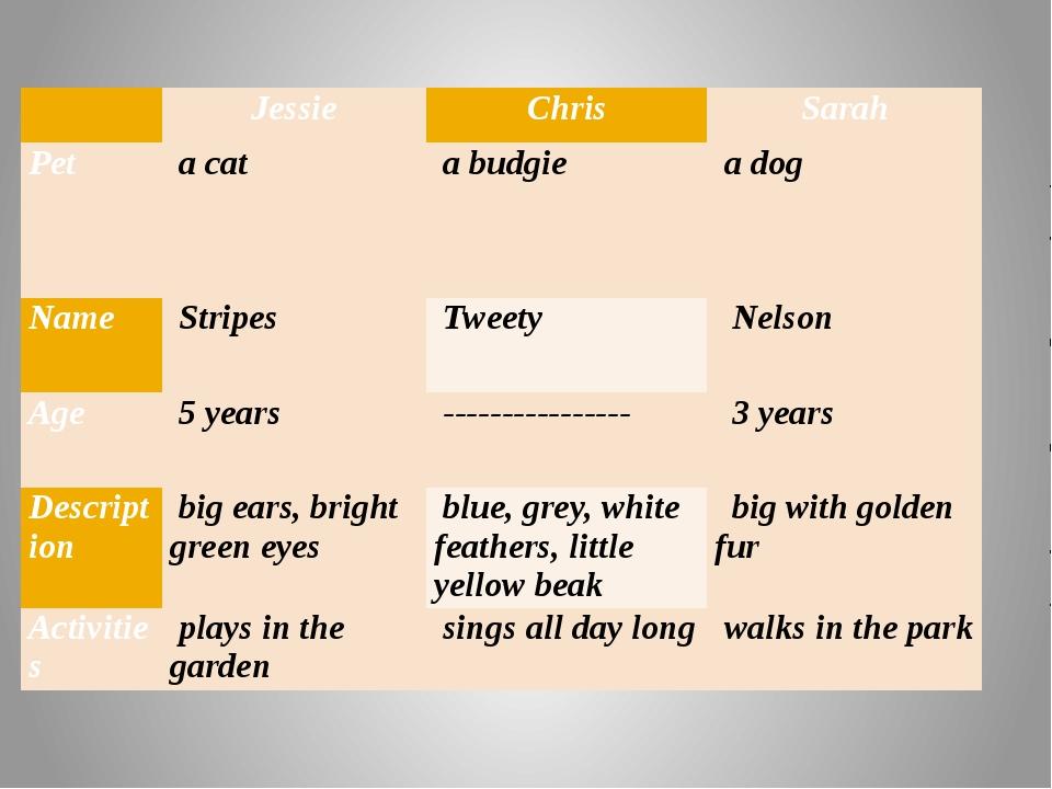 Jessie Chris Sarah Pet acat a budgie a dog Name Stripes Tweety Nelso...