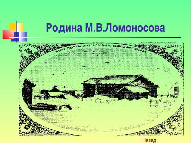 Родина М.В.Ломоносова Назад