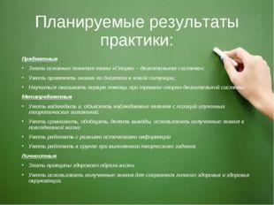 Планируемые результаты практики: Предметные Знать основные понятия темы «Опор