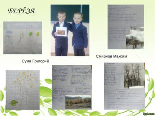 Сума Григорий Смирнов Максим БЕРЁЗА