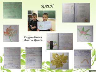 Гордеев Никита Ликитин Данила КЛЁН