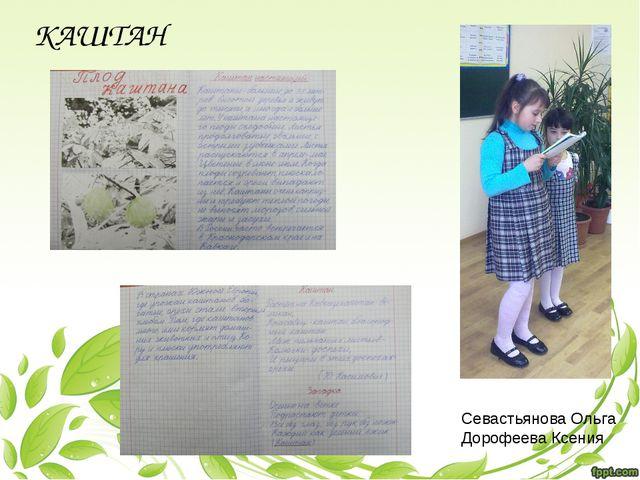 Севастьянова Ольга Дорофеева Ксения КАШТАН