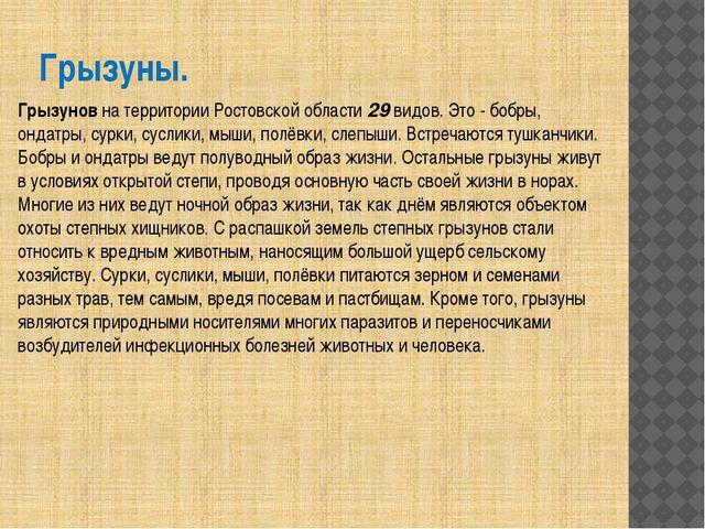 Грызуны. Грызунов на территории Ростовской области 29 видов. Это - бобры, онд...