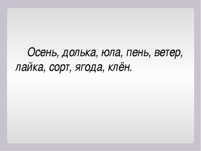 Осень, долька, юла, пень, ветер, лайка, сорт, ягода, клён.