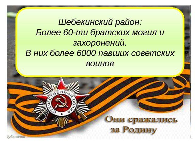 Шебекинский район: Более 60-ти братских могил и захоронений. В них более 6000...