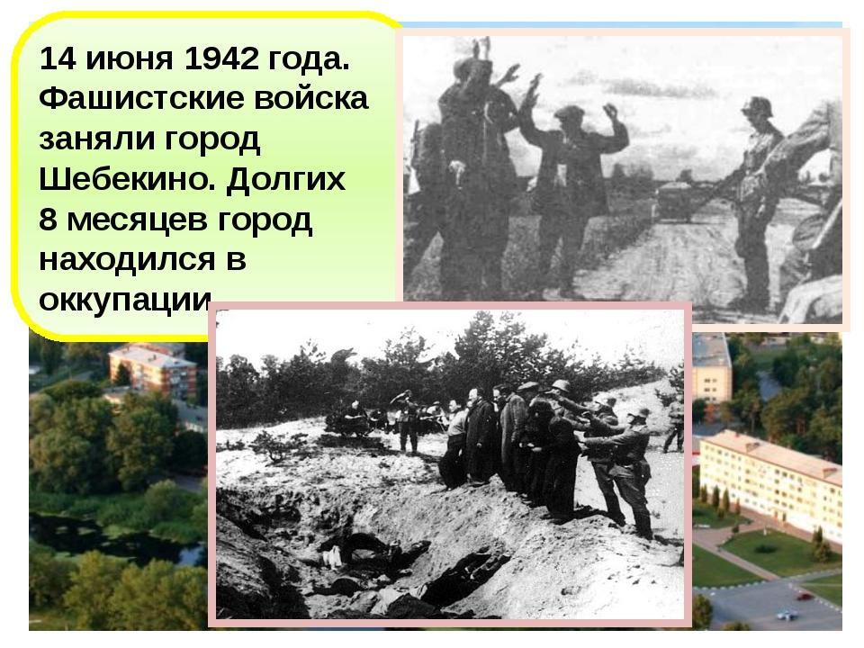 14 июня 1942 года. Фашистские войска заняли город Шебекино. Долгих 8 месяцев...