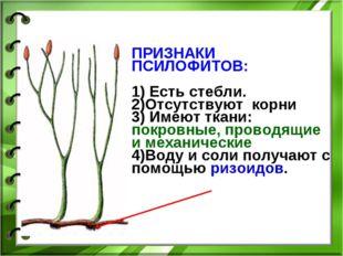 ПРИЗНАКИ ПСИЛОФИТОВ: 1) Есть стебли. 2)Отсутствуют корни 3) Имеют ткани: покр