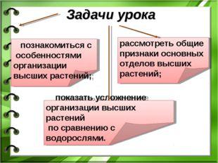 Задачи урока познакомиться с особенностями организации высших растений; расс