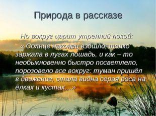 Природа в рассказе Но вокруг царит утренний покой: « Солнце наконец взошло; т