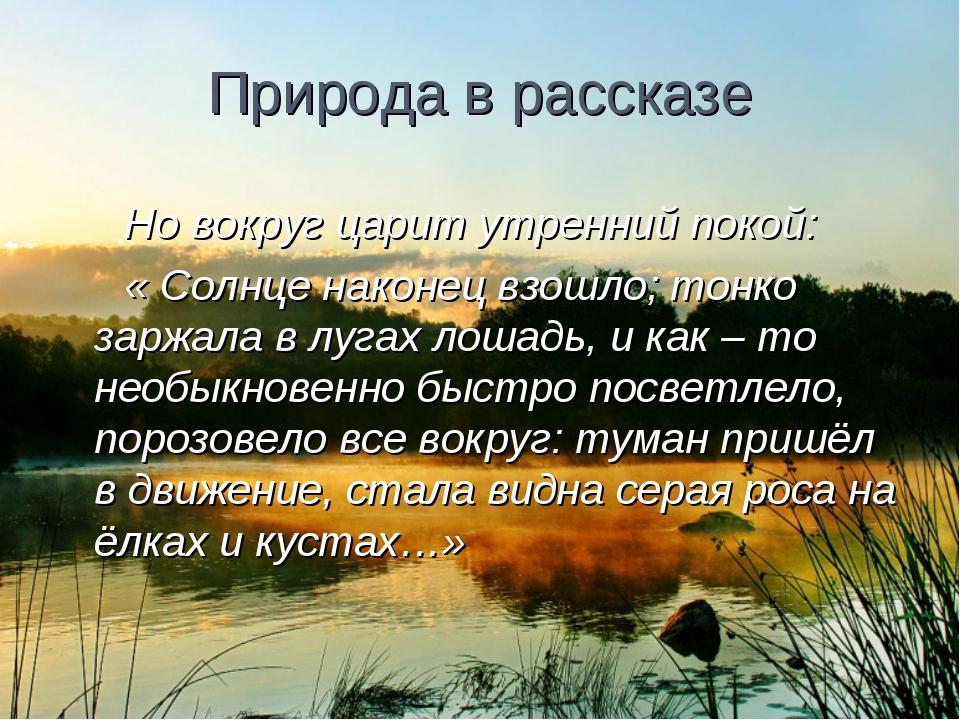 Природа в рассказе Но вокруг царит утренний покой: « Солнце наконец взошло; т...