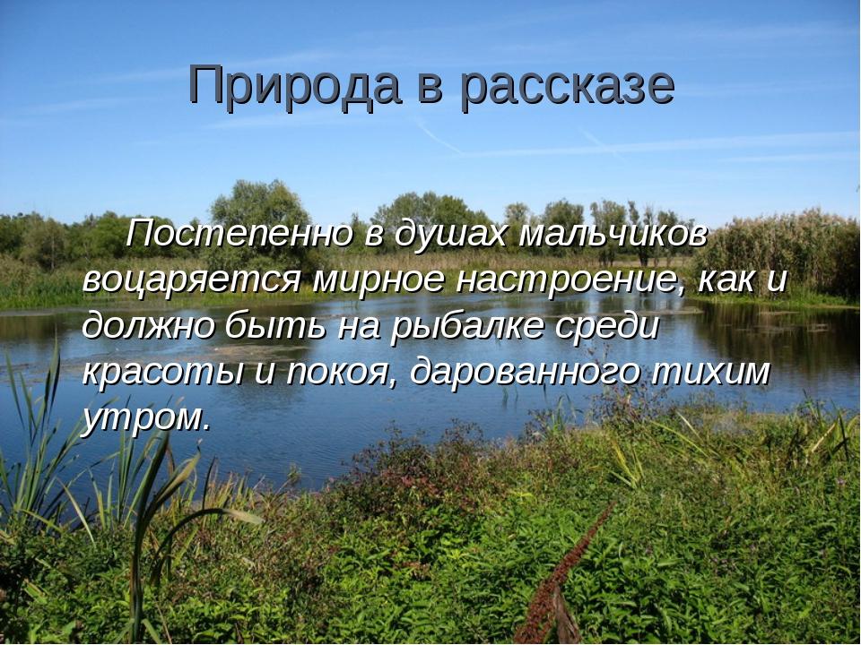 Природа в рассказе Постепенно в душах мальчиков воцаряется мирное настроение,...