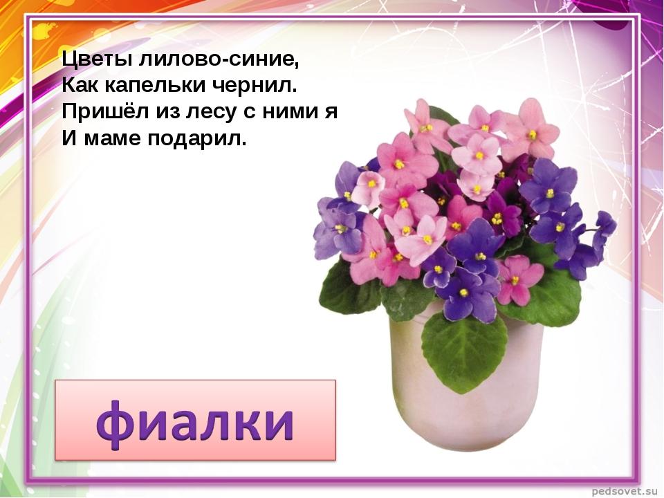 Цветы лилово-синие, Как капельки чернил. Пришёл из лесу с ними я И маме подар...