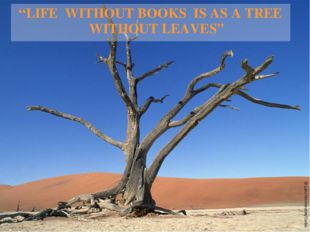 """LIFE WITHOUT BOOKS IS AS A TREE WITHOUT LEAVES"""