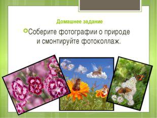 Домашнее задание Соберите фотографии о природе и смонтируйте фотоколлаж.