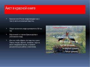 Аист в красной книге Красная книга России предупреждает нас о том,что аисты-и