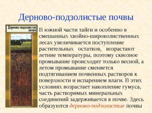 Дерново-подзолистые почвы В южной части тайги и особенно в смешанных хвойно-ш