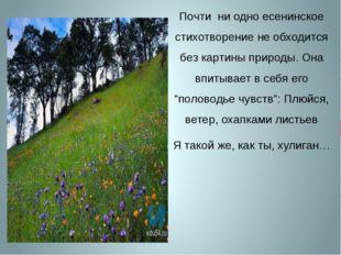 Почти ни одно есенинское стихотворение не обходится без картины природы. Она