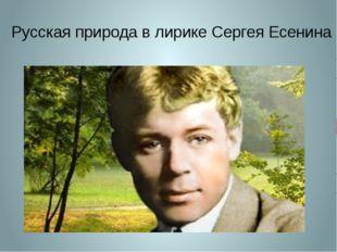 Русская природа в лирике Сергея Есенина