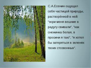 """С.А.Есенин ощущал себя частицей природы, растворённой в ней: """"зори меня вешни"""