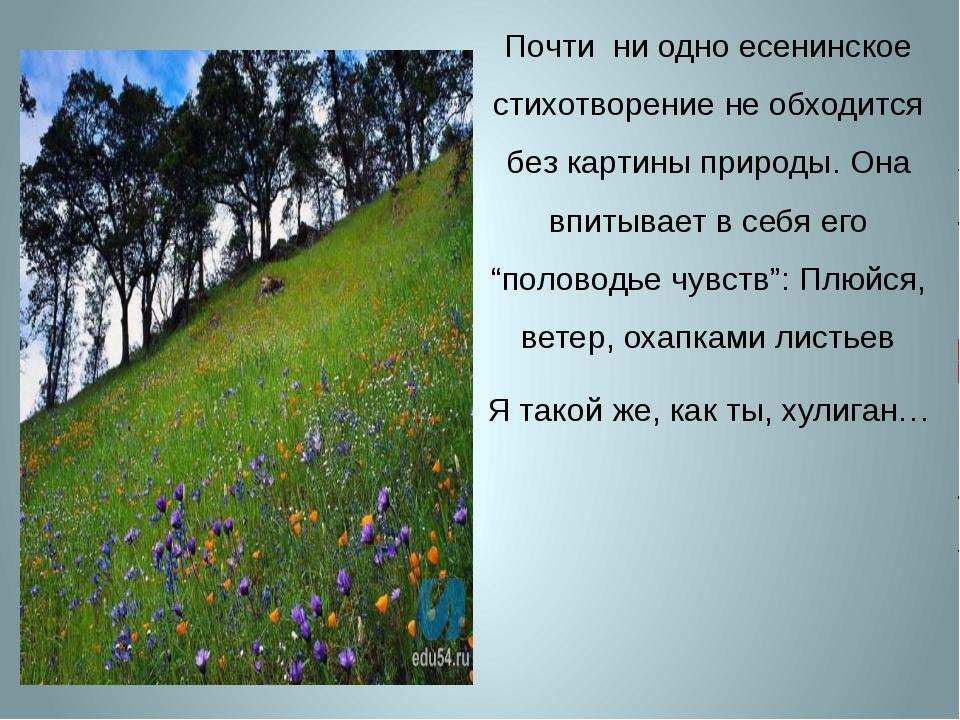 Почти ни одно есенинское стихотворение не обходится без картины природы. Она...