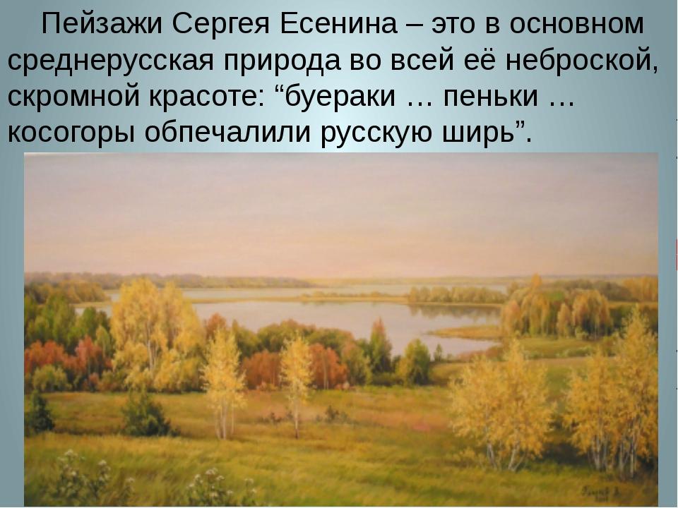 Пейзажи Сергея Есенина – это в основном среднерусская природа во всей её неб...