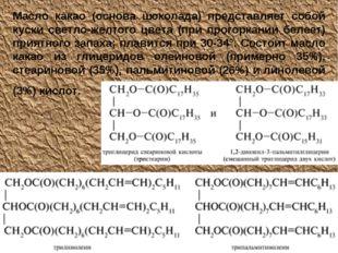 Масло какао (основа шоколада) представляет собой куски светло-желтого цвета (