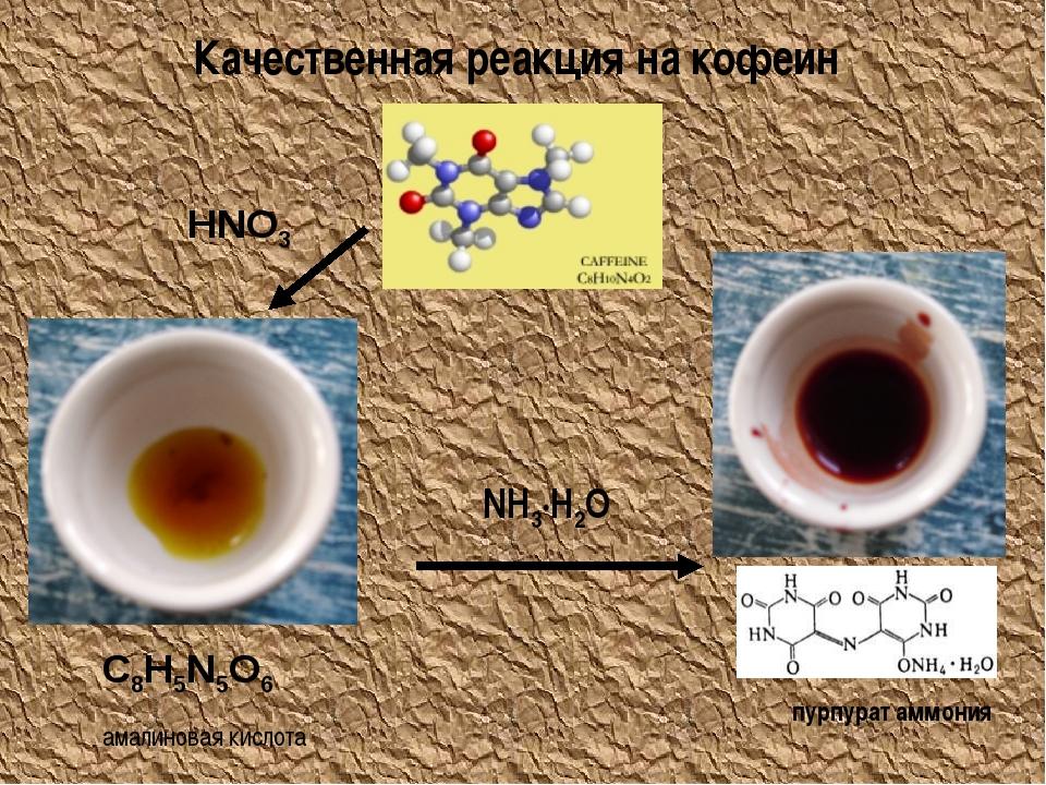 Качественная реакция на кофеин HNO3 NH3·H2O амалиновая кислота пурпурат аммон...