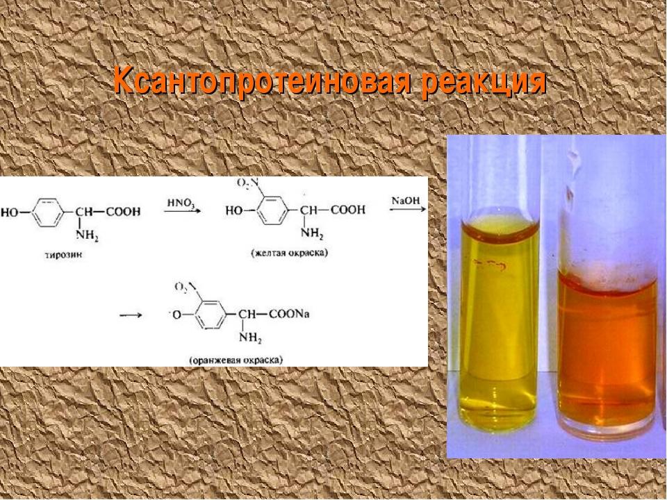 Ксантопротеиновая реакция