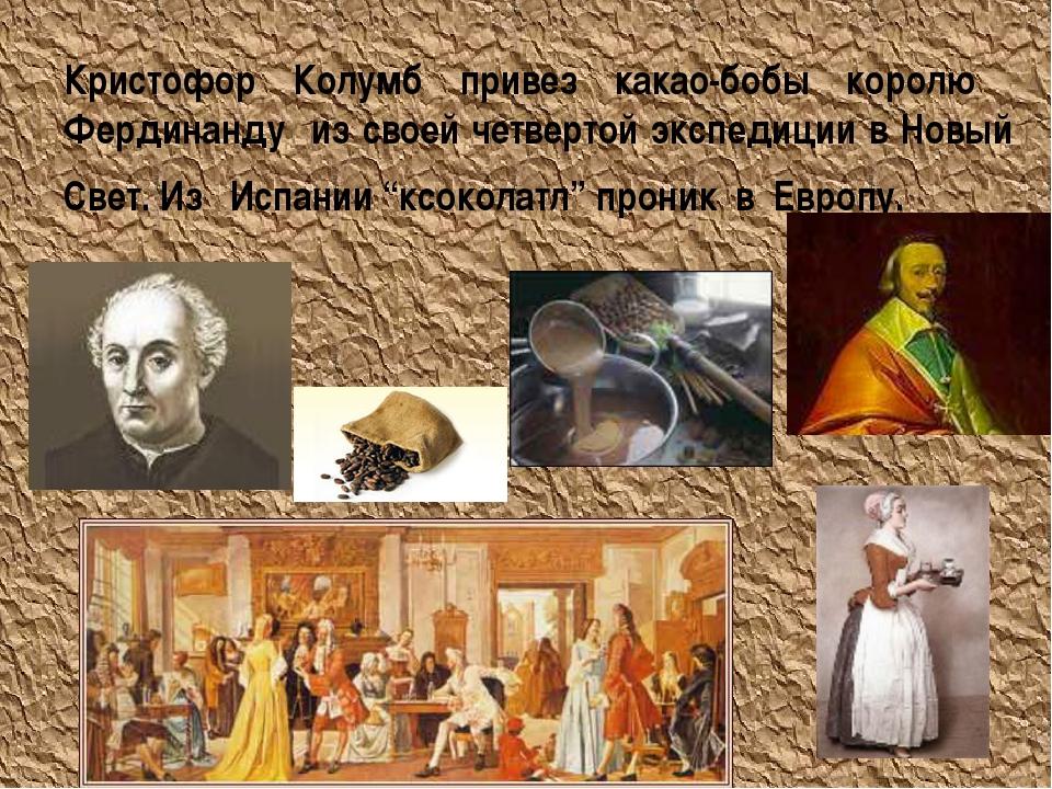 Кристофор Колумб привез какао-бобы королю Фердинанду из своей четвертой экспе...