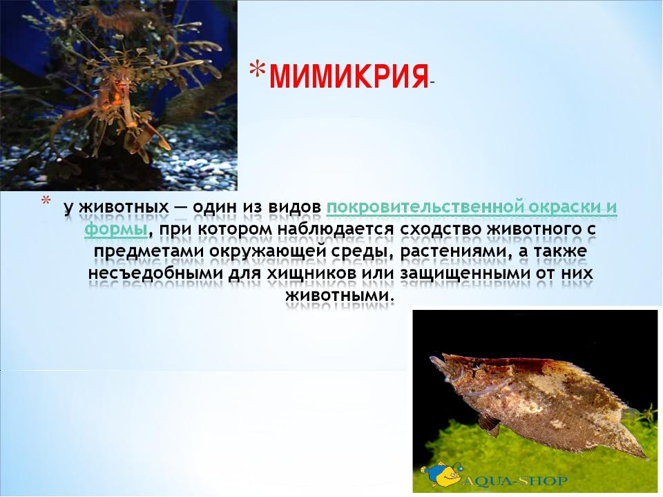 МИМИКРИЯ-