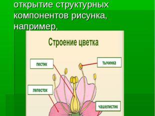 6.Работа с изображениями При изучении нового материала поэтапное открытие ст