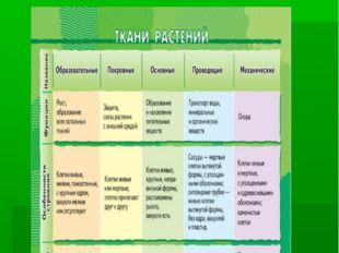 8.Работа с таблицами Поэтапное заполнение таблицы при изучении нового матер