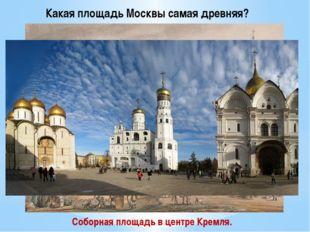 Какая площадь Москвы самая древняя? Соборная площадь в центре Кремля.