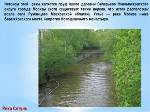 Истоком этой реки является пруд около деревни Саларьево Новомосковского округ