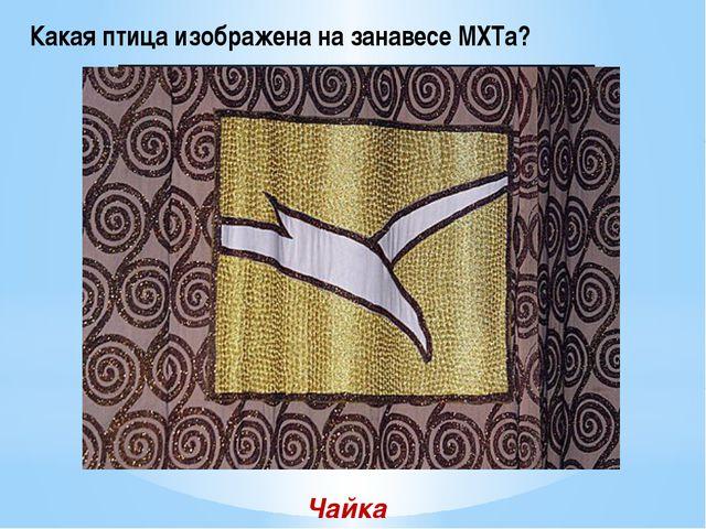 Какая птица изображена на занавесе МХТа? Чайка