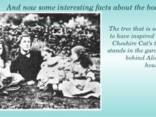 And now some interesting facts about the book. The tree that is said to have