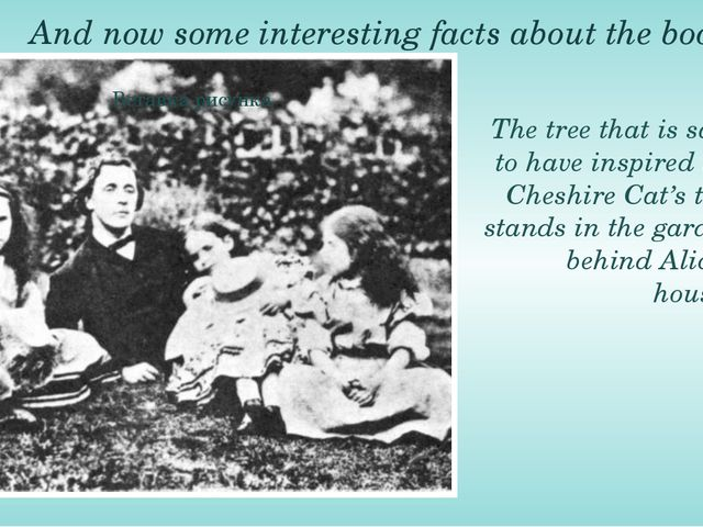 And now some interesting facts about the book. The tree that is said to have...