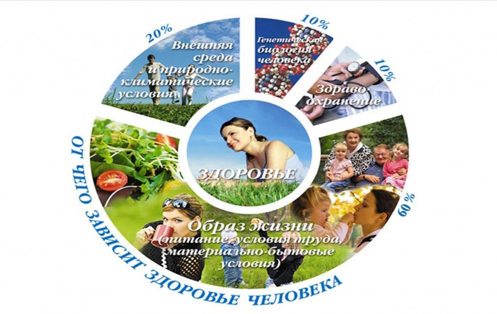 http://www.ngonb.ru/upload/medialibrary/859/1.jpg
