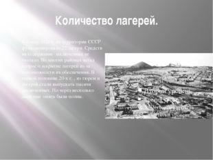 Количество лагерей. К концу 1921 г. на территории СССР функционировало 22 лаг