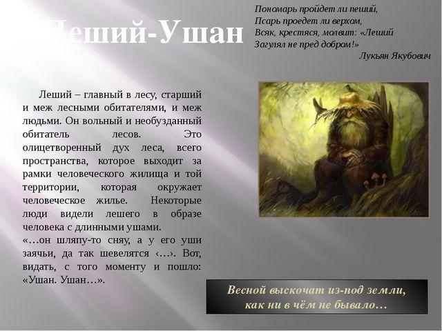 Леший-Ушан Леший – главный в лесу, старший и меж лесными обитателями, и меж л...