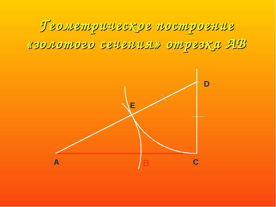 Геометрическое построение «золотого сечения» отрезка АВ А С D E B