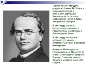 Грегор Иоганн Мендель родился 22 июня 1822 года в семье крестьянина в небольш